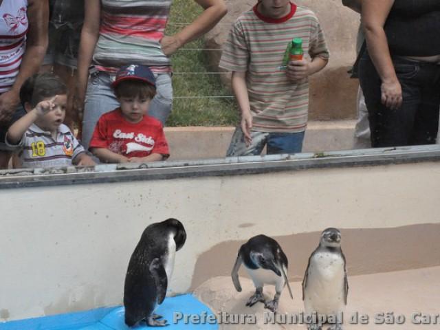 Parque Ecológico de São Carlos inaugura Planície da Patagônia