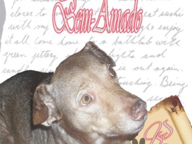 Obra literária apresenta a autobiografia de um vira-lata muito amado