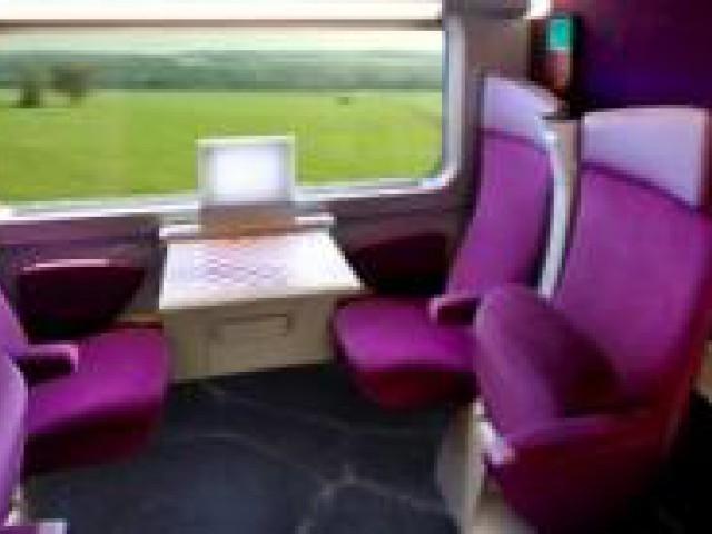 Durante as férias, donos também podem levar pets em viagem de trem
